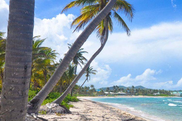 USVI St. Croix The Palms at Pelican Cove