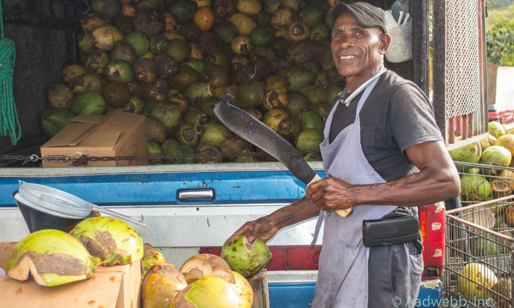 USVI Fruit Stand Coconuts