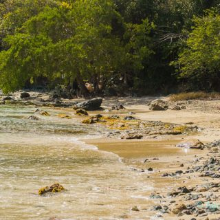 USVI St. Croix